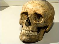 _41250872_skull_birmingham_203b