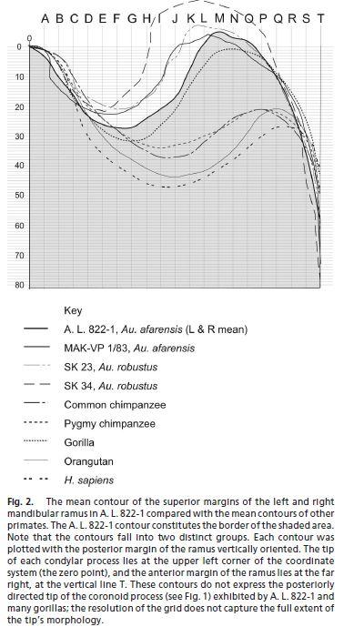 Rak Diagram